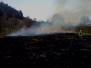 Požár trávy na Boskovické - 2012